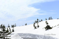 残雪の山 - 季節のおくりもの