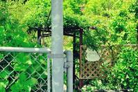 大分市/シルクガーデン2017 - ゆっくり、ぱちぱちり