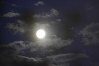 満月の沈み行く月を愛でて、BYOINからBIYOINへ - 生きる歓び Plaisir de Vivre。人生はつらし、されど愉しく美しく