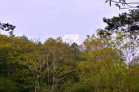 今日の富士山 - 風とこだま