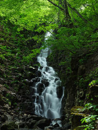 新緑の不動滝 - デジタルで見ていた風景