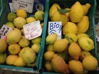食べるレモン、カナローネ - フィレンツェのガイド なぎさの便り