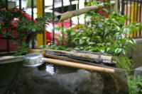 稲荷鬼王神社(恵比寿神) - 写真日記