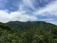 医王山(白兀山(896m)・奥医王山(939m)) - ヤマオヤジの登山日記