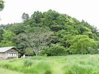 今年もあっちとこっちから元気な声が、、 - 千葉県いすみ環境と文化のさとセンター
