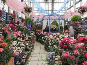 銀座の空中庭園 - 花を追いかけて