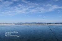 浜名湖で - すずめtoめばるtoナマケモノ
