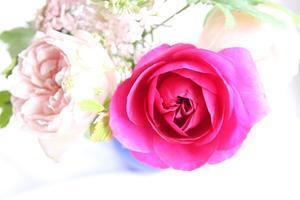 花束 - おかしな生活
