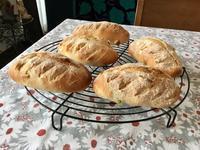 かのこ豆とマカデミアンナッツの全粒粉パンとワンプレート - カフェ気分なパン教室  ローズのマリ