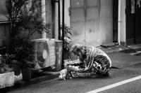 優しさ… - Photo & Shot
