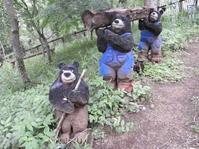 ついに行ってきました「クマの森ミュージアム」! - 柴まみママの大多喜便り