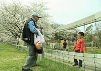 こどもの国「春のフォトコンテスト」 入賞 - しあわせ日和
