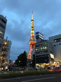 ●夕方の東京タワー - 太陽と大地のエクボ3