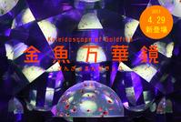 金魚の万華鏡?! - 登別温泉 第一滝本館 たきもとブログ