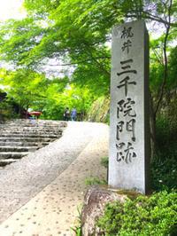 ♪京都 大原 三千院へ  - むつずかん