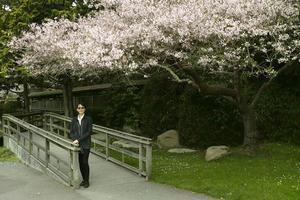 今年の桜 - 風忘続々