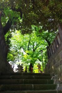 武蔵野紀行11 - はーとらんど写真感