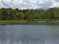 カッコウの鳴き声が新緑の森に響き渡る - 原村 ペンション八ヶ岳ゲストハウス