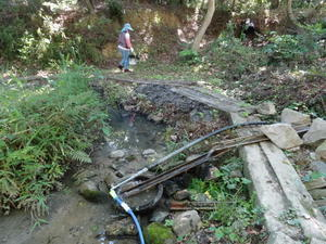 作業小屋がほぼ完成・・・うみべの森 - 活き生き in 岬町