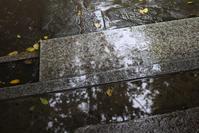 Rainy day【8】 - 写真の記憶