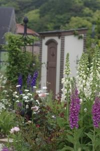 "Casa de Rosa の花達 - 屋上庭園 ""Giardino di Luce"""