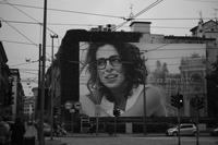 huge billboard - S w a m p y D o g - my laidback life