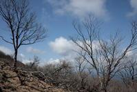 8日目-2 祖母山登頂 - アサクフカク