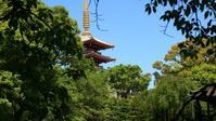 浅草寺 - belakangan ini