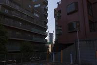 新参者 - 社会人美大生の写真日記。