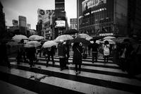東京 2017 05 B&W #12 - Yoshi-A の写真の楽しみ