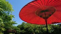 神泉苑で龍王船 - latina diary blog