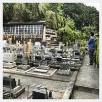 愛犬墓参りと小田原城と鰻重 - ヨウムな生活