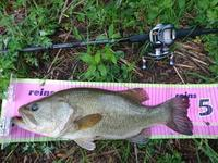 5月14日釣行、野池ランカーゲット! - ハム蔵の石川県バス釣り日記