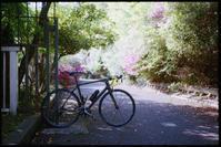 自転車の練習ついでに撮っています - のっとこ