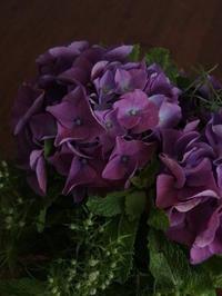 WSのお知らせ - 暮らしと植物のブログ