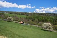 まきば公園のヤマナシ - オーナーズブログ・八ケ岳南麓は晴れています!
