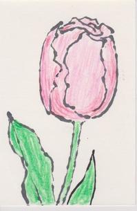 色鉛筆で塗り絵 - 誰でも書ける感動する絵手紙