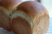 クルミを使ったパン2種類焼きました - パン・お菓子教室 「こ む ぎ」