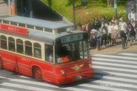 あかいくつ『横浜』 - 写愛館