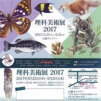【展覧会】5/25〜5/31 理科美術展2017 - junya.blog(猫×犬)リアリズム絵画
