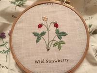 ワイルドストロベリーの刺しゅう / 鳩山会館のバラ園 - y-hygge