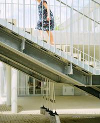 階段を登る - BobのCamera