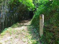 熊野古道・潮見峠越えー2 - 東 道のきのくに花街道