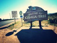 Vintageナプキン@Joshua Treeスリフト巡り - 気ままなLAヴィンテージ生活
