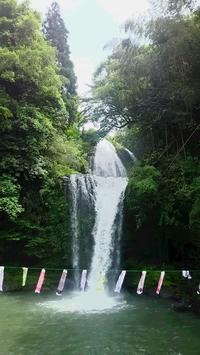 慈恩の滝・桜滝① - じゃびっとひまわり日記