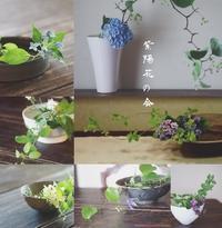 紫陽花の会 2017 @陶屋なづなさん - つきくさ帖   草花とおして、毎日とくべつ