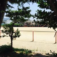 ハンドベースボール大会 - モリンダ*ウパウパのポップライフ