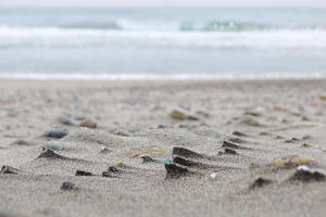 Beachcomber's Logbook