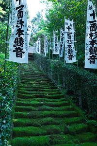 鎌倉散歩 「杉本寺」  - ようこそ風の散歩へ