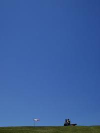「薪ネットは、晴れる」とユリノキまつり・・・びわ湖バレイのスイセンゲレンデ - 朽木小川より 「itiのデジカメ日記」 高島市の奥山・針畑郷からフォトエッセイ